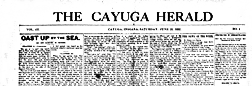 Cayuga Herald newspaper archives