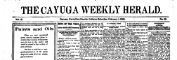 Cayuga Weekly Herald newspaper archives