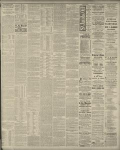 Boston Post Newspaper Archives Mar 28 1882 p 3
