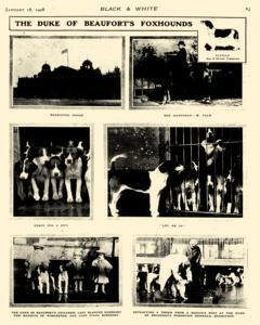 Black And White, January 18, 1908, Page 20