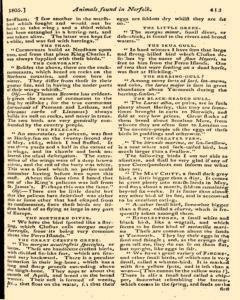 Monthly Magazine, December 01, 1805, Page 21