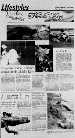 Athens News Courier, January 09, 2005, Page 33