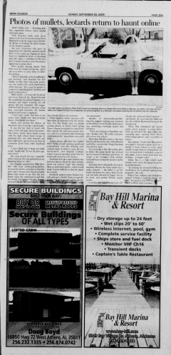 Athens News Courier, September 20, 2009, Page 49