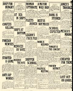 Fairbanks Weekly News Miner and Daily Citizen, January 28, 1921, Page 14