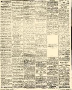 Semi Weekly Mountain Democrat, December 29, 1860, Page 2