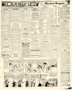 Woodland Daily Democrat, September 10, 1931, Page 5