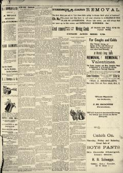 Alton Daily Telegraph, January 27, 1890, Page 3
