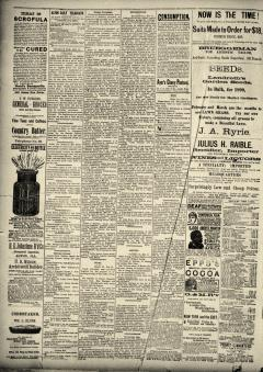 Alton Daily Telegraph, February 13, 1890, Page 2