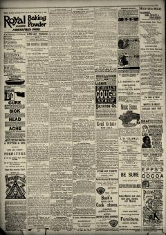 Alton Daily Telegraph, February 28, 1890, Page 4