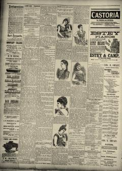Alton Daily Telegraph, August 18, 1890, Page 2