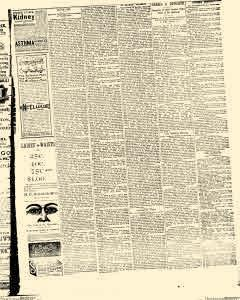 Decatur Bulletin Sentinel, March 16, 1895, Page 3