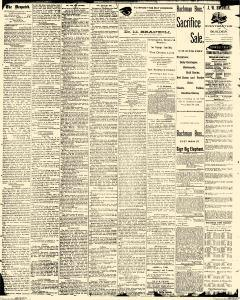 Decatur Daily Despatch, August 22, 1889, Page 2