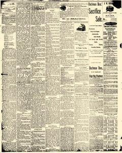Decatur Daily Despatch, August 30, 1890, Page 2