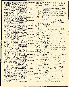 Dixon Weekly Herald, August 05, 1868, Page 3