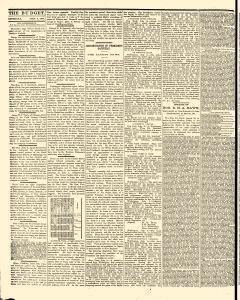 Freeport Budget, July 09, 1881, Page 4