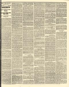 Freeport Budget, July 09, 1881, Page 3