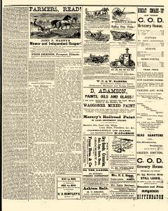Freeport Budget, July 09, 1881, Page 5