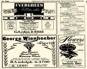 Oak Park Telephone Directory, May 01, 1956, Page 242