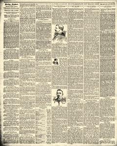 Sterling Standard, January 23, 1890, Page 2