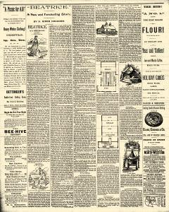 Sterling Standard, March 06, 1890, Page 6