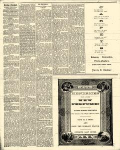 Sterling Standard, March 13, 1890, Page 4