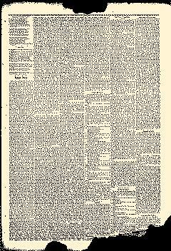 Albion New Era, February 07, 1884, Page 7