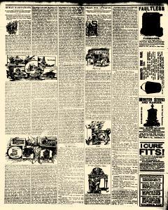 Alden Times, January 10, 1890, Page 20