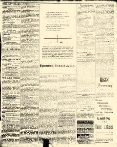 Alden Times, January 10, 1890, Page 17