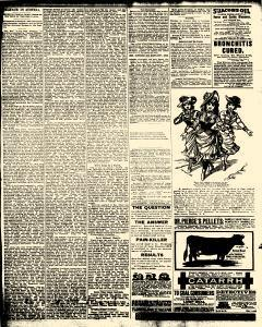 Alden Times, January 10, 1890, Page 19