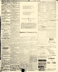 Alden Times, January 10, 1890, Page 11