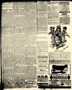 Alden Times, January 10, 1890, Page 12