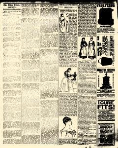 Alden Times, January 17, 1890, Page 20
