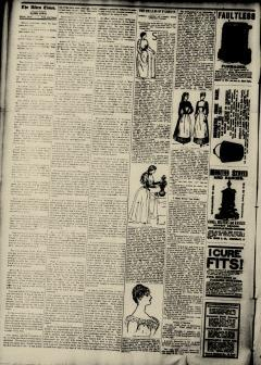 Alden Times, January 17, 1890, Page 8