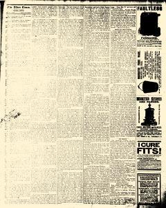 Alden Times, January 24, 1890, Page 20