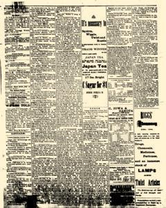 Alden Times, January 24, 1890, p. 11