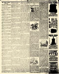 Alden Times, January 31, 1890, Page 20
