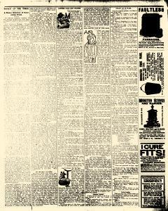 Alden Times, February 21, 1890, Page 20