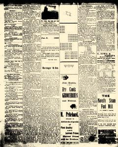Alden Times, February 21, 1890, Page 17
