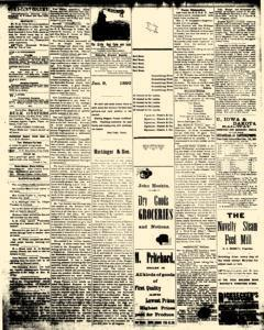 Alden Times, February 21, 1890, Page 11