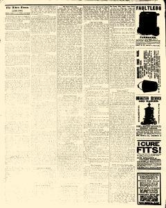 Alden Times, March 14, 1890, Page 20