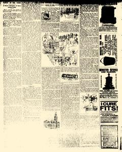 Alden Times, March 21, 1890, Page 20
