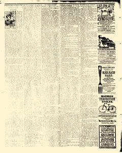 Alden Times, August 01, 1890, Page 20