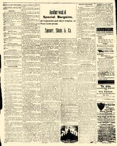Alden Times, August 01, 1890, Page 17
