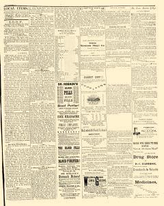 Iowa South West, October 19, 1867, Page 3