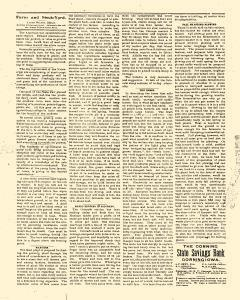 Adams County Union, November 07, 1895, Page 8