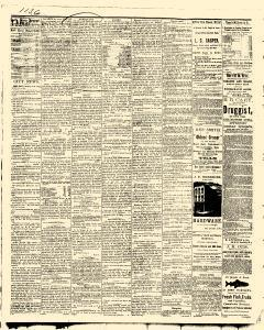 Des Moines State Iowa Journal, May 09, 1875, Page 4