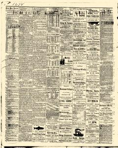 Des Moines State Iowa Journal, June 20, 1875, Page 2