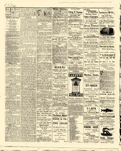 Des Moines State Iowa Journal, July 22, 1875, Page 2