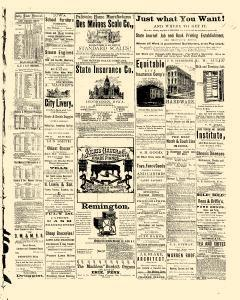 Des Moines State Iowa Journal, July 22, 1875, Page 3