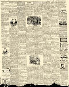 Herald, August 16, 1893, Page 3